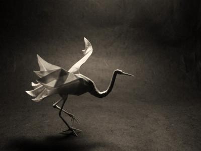 Origami.01